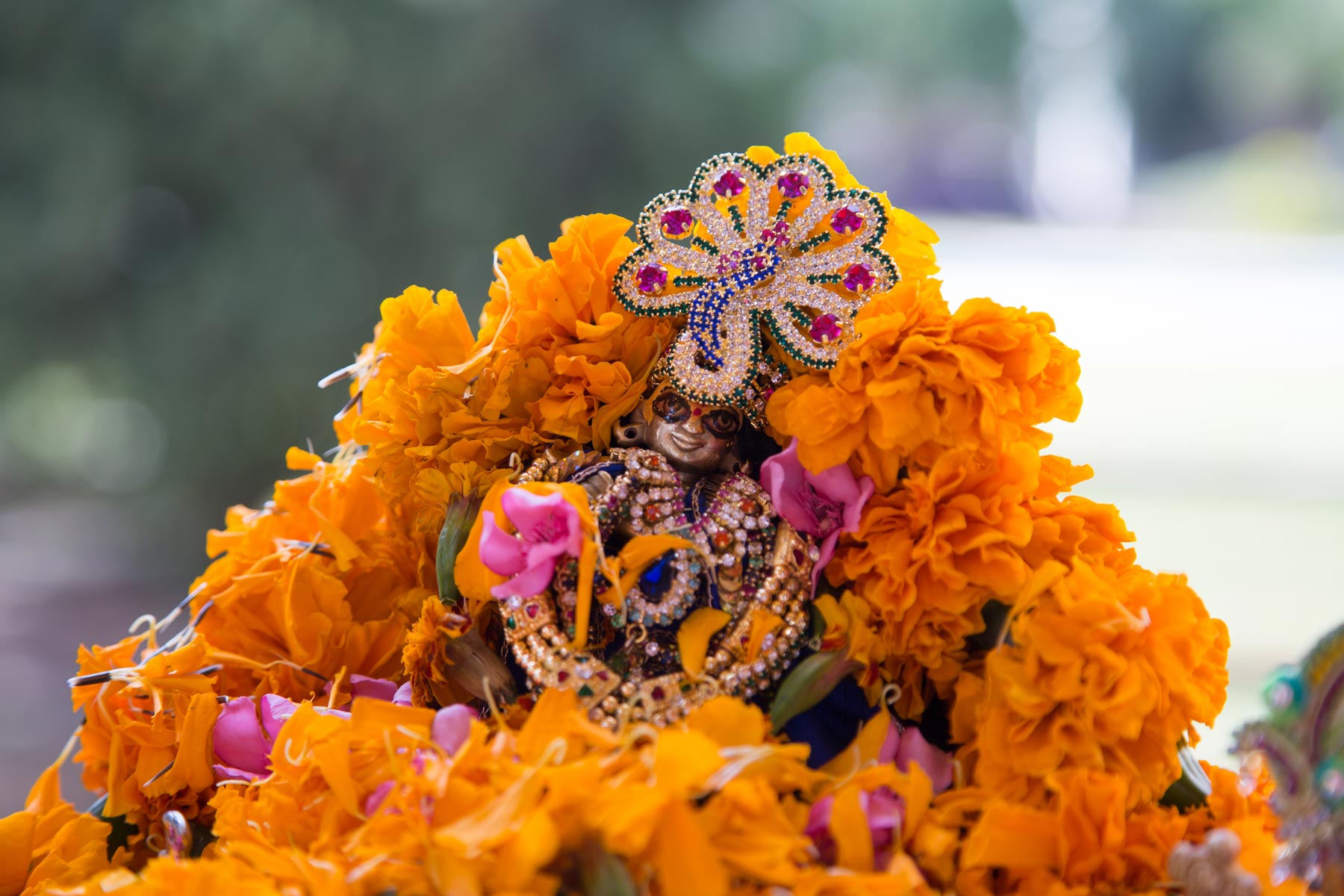 meerabai-krishna-giridhari-darshan