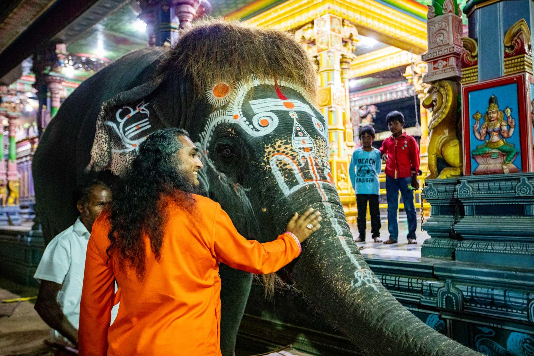 paramahamsa-vishwananda-cuddling-elephant